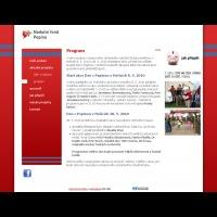 program nadačního fondu